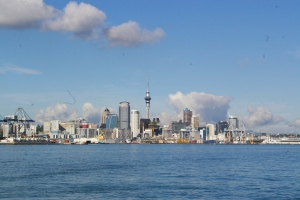 The Auckland Skyline