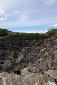 Lava field on Rangitoto. (Could also be the road to Mordor.)