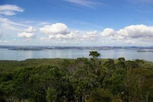 From the top of Rangitoto