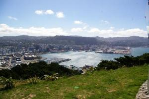 Wellington, from the top of Mt. Victoria