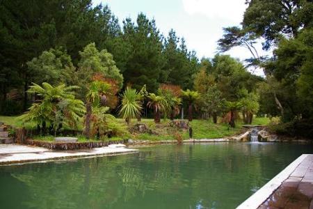 wairaki-pool